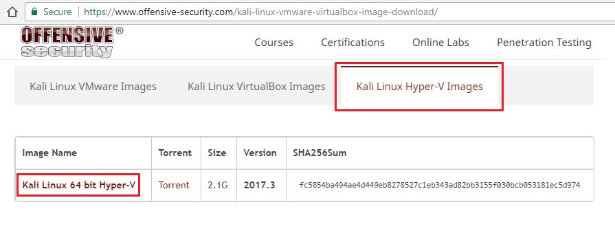 Setup Kali Linux and Metasploitable in Hyper-V on Windows 10